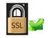 256 Bit SSL - Sicherheit